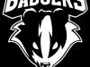 Badgers.jpg