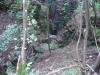 DSCF4195